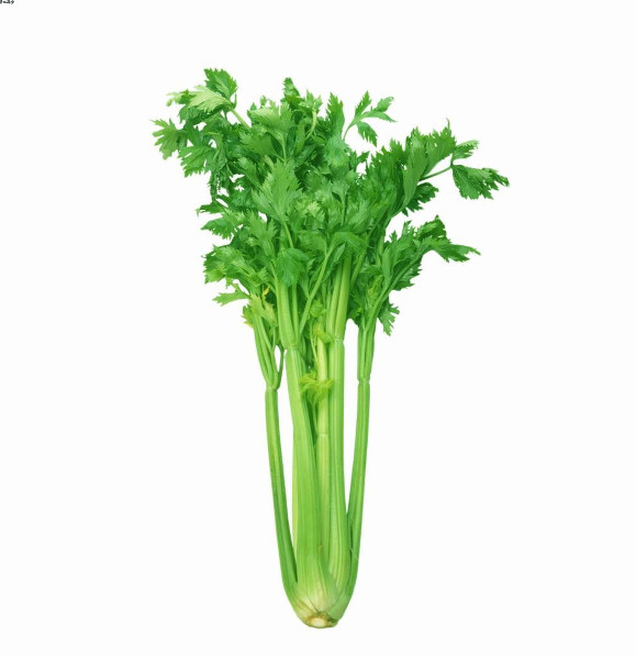 Chinese Celery 01
