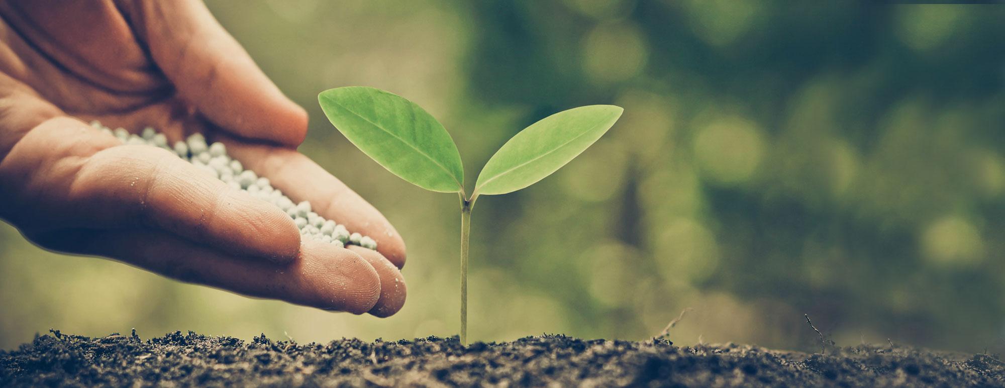 sostenibilita-2